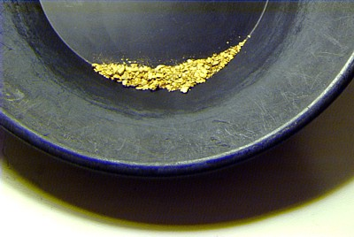 You Can Learn To Pan For Gold Instructions Panning How