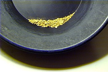 gold ounce pan