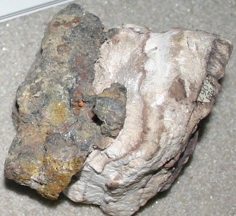 Cerargyrite (white) on angelesite