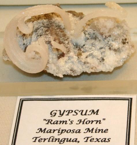 Ramshorn Gypsum